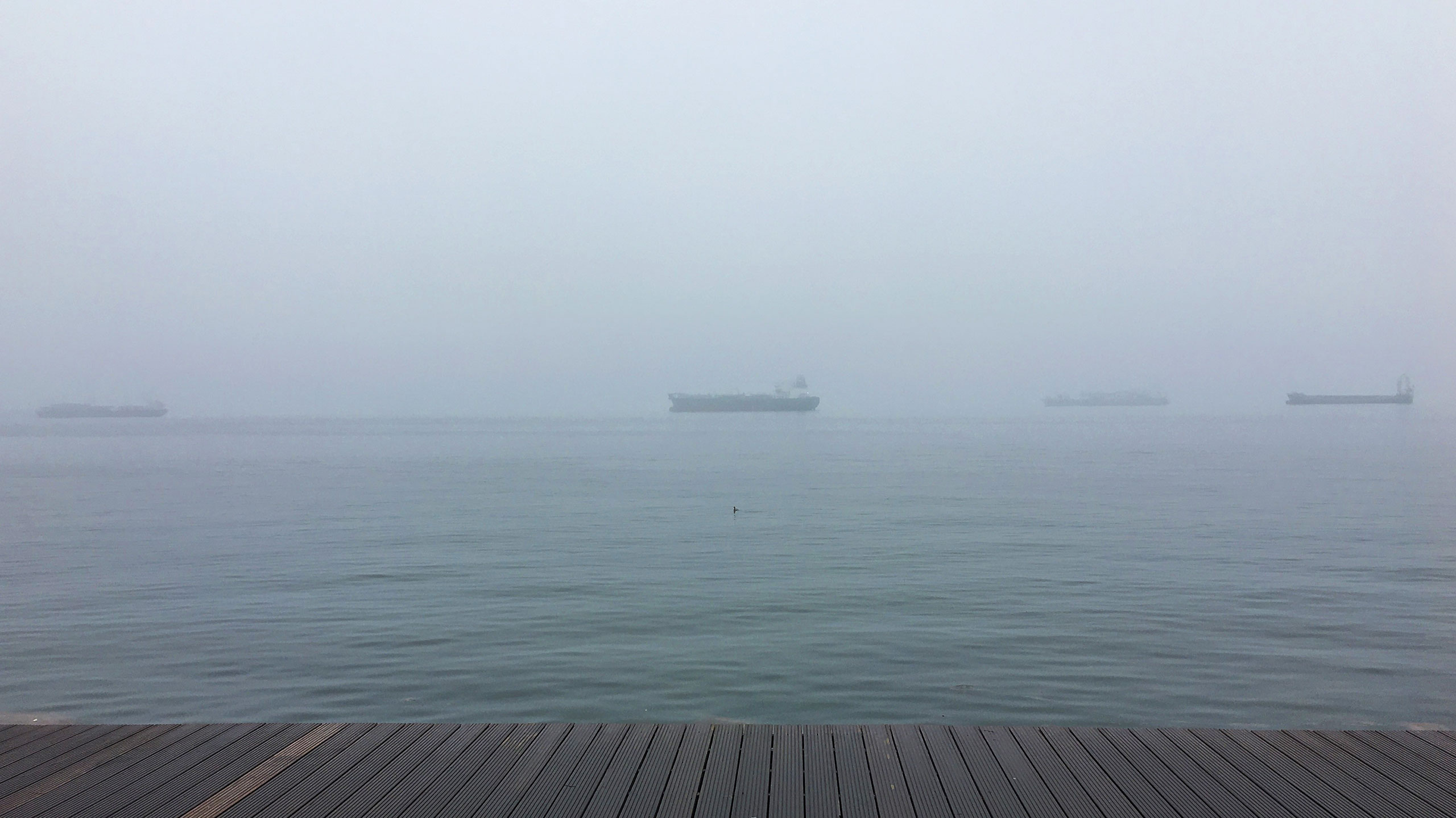 Container ships in a foggy bay.